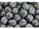 e-Liquid Blueberry Flavor